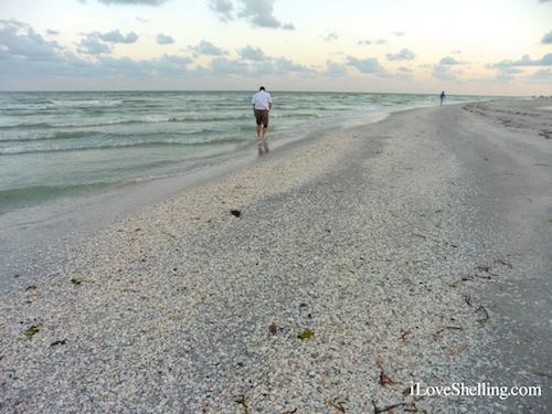 Never Desperate Beachcombers