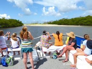 boating to a shelling hole in sw florida