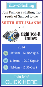 sight sea-r adventures aug-oct 2014