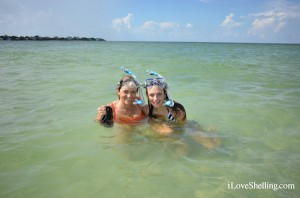 Snorkeling for shells in southwest Florida