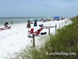 Busy Lighthouse Beach on Sanibel in August