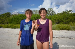 Coby and Mady find shells in southwest florida