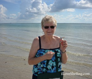 Donna from Gainsville FL finds worm shell on Cayo Costa