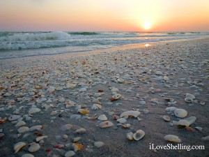 Sanibel sunset laced with seashells