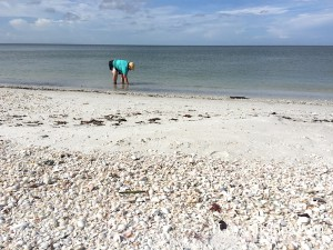 Sanibel stoop sheller Big Hickory Island