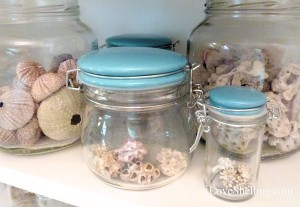 shellaboratory jars of barnacle beach bling