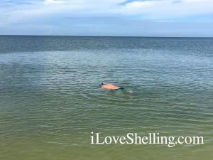 snorkeling Bonita Beach Florida