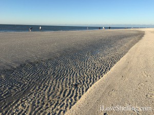 Low tide morning Sanibel