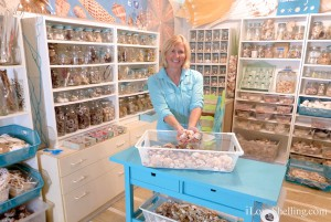 Pam Rambo in her Shellaboratory seashell laboratory