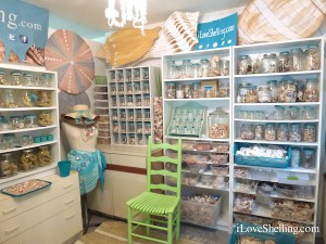 Pam's Shellaboratory of shells on Sanibel