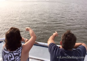 shelling and dolphin cruise with Pam Rambo