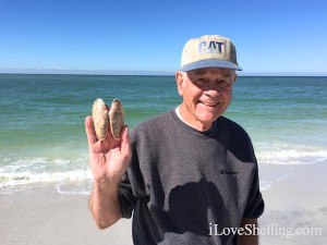Finding beautiful seashells in SWFL
