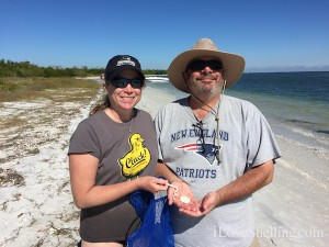 finding sand dollars and worm shells