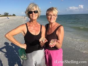 Linda NY Sharon PA sisters find seashells