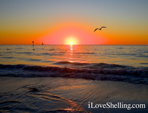 Sunset at Pier 60 Clearwater Beach Florida
