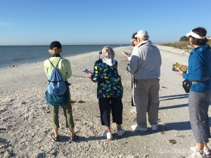 audubon society sanibel christmas bird count
