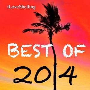 i Love Shelling best beachcombing of 2014