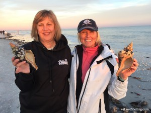 Pam Rambo and Lynn find large shells after storm