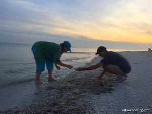 Shell stooping for small seashells on Sanibel