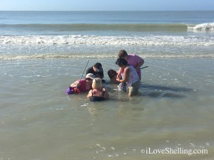bonding by seashell collecting