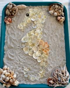 seashell seahorse display