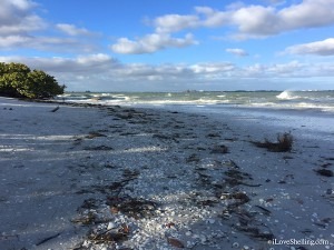stormy seas and seashells at Sanibel Lighthouse beach