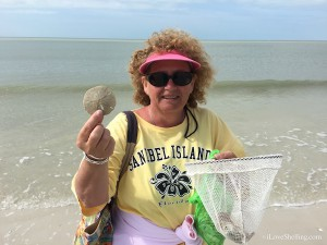 Helen from Indiana finds sand dollars in Bonita Springs Florida