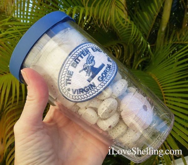 The Bitter End plastic cup with lid for breakable shells