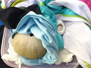 pack fragile sea shells urchins in tee shirts