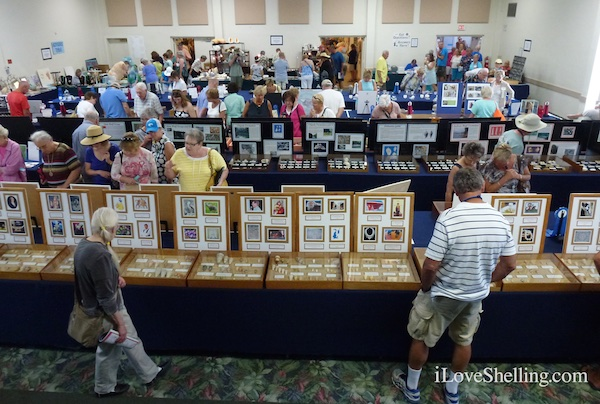 78th Sanibel Shell Show Festival Fair 2015