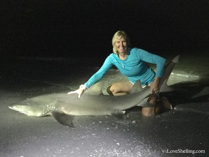 Pam Rambo catches a lemon shark she named Jawnonia