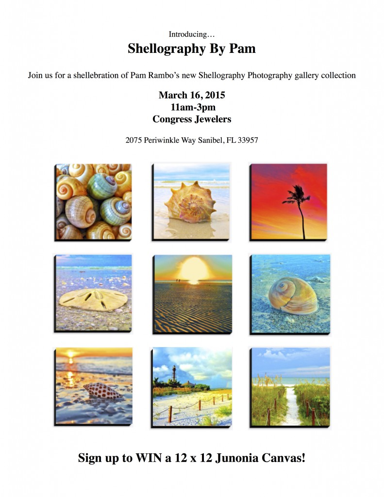 Special Event – Shellography Photography by Pam