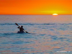 Elliot Sudal paddles into the Sanibel sunset with shark bait