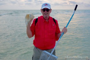 Super Sheller Clark Rambo finds 11 inch whelk shell Sanibel