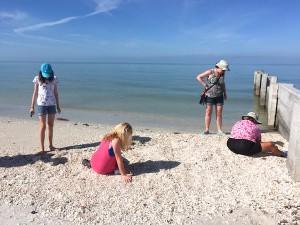 collecting shells in Bonita Florida