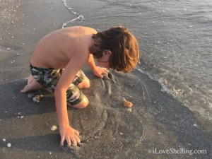 Boy with a seashell on Sanibel island
