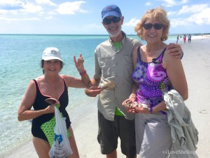 Rotary 6960 enjoy collecting shells and fellowship at Captiva Florida conference