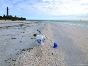 Sanibel seashell research collections bucket lighthouse beach