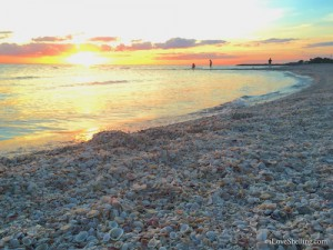 Sanibel sunset shells at Blind Pass