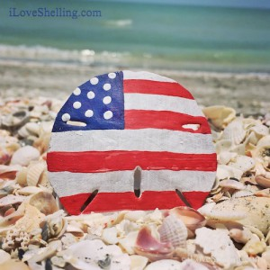 sand dollar painted american flag on Sanibel Beach
