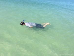 snorkeling Lee County Florida