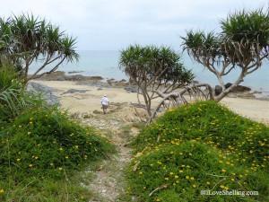 Beautiful path to rocky beach in Okinawa Japan