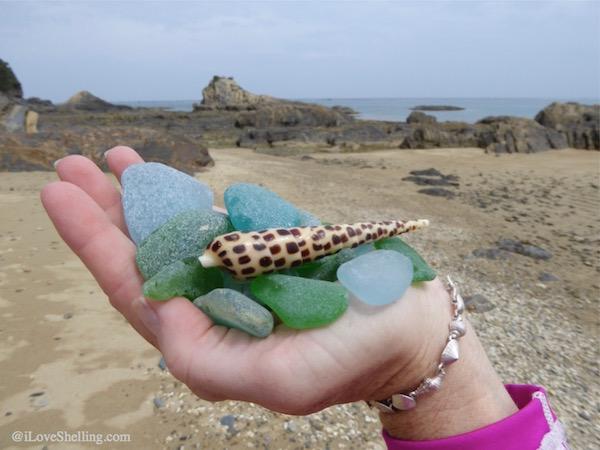 Our Exshellent Beach Combing Adventure in Okinawa Japan