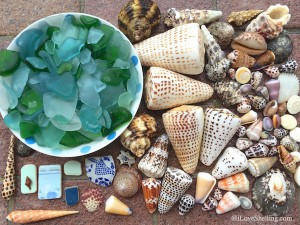Day 2- Sea glass and seashell beach combing finds in Okinawa Japan