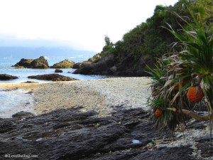 Hidden beach cove with shells and coral in Okinawa Japan