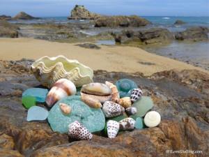 Turquoise sea glass and Okinawa seashells on rocky beachTurquoise sea glass and Okinawa seashells on rocky beach