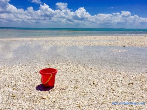 Beachy dreaming. Red bucket on a shell filled beach