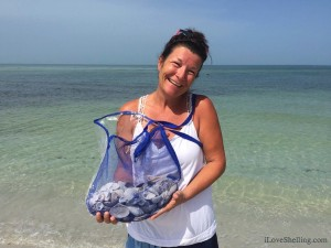 Darla finds seashells for frame shell crafts