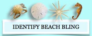 identify beach bling identification
