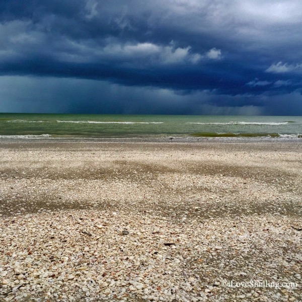 Gimme Shellter Sanibel shells and stormy sky